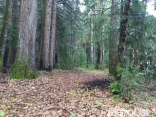 0 EBBERTS RANCH ROAD FORESTHILL, CA 95631  $99,000 (FOR SALE)